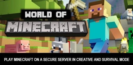 World of Minecraft